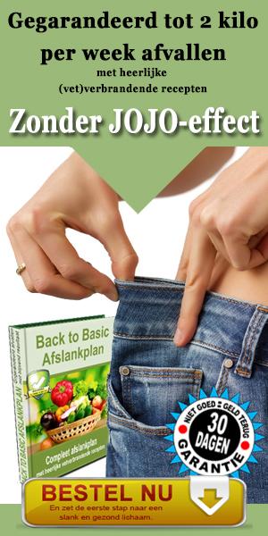 snel gezond afvallen recepten