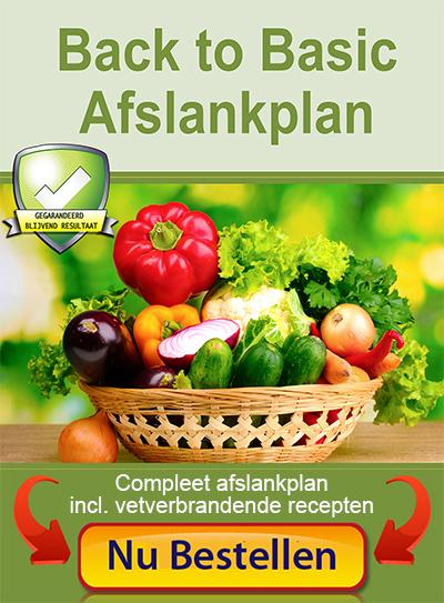 koolhydraatarm dieet receptenboek