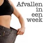 5 kilo afvallen in 2 weken recepten week 2
