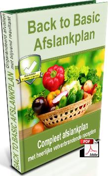 Koolhydraatarm dieet - Snel afvallen met dit koolhydraatarme recepten boek